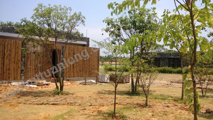 Ốp tre trúc tường rào Biệt thự nghỉ dưỡng Flamingo Vình phúc