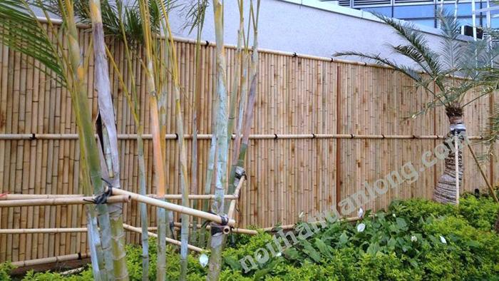 Thi công hàng rào tre trúc tại công ty TNHH xây dựng tổng hợp seinvina tại lote