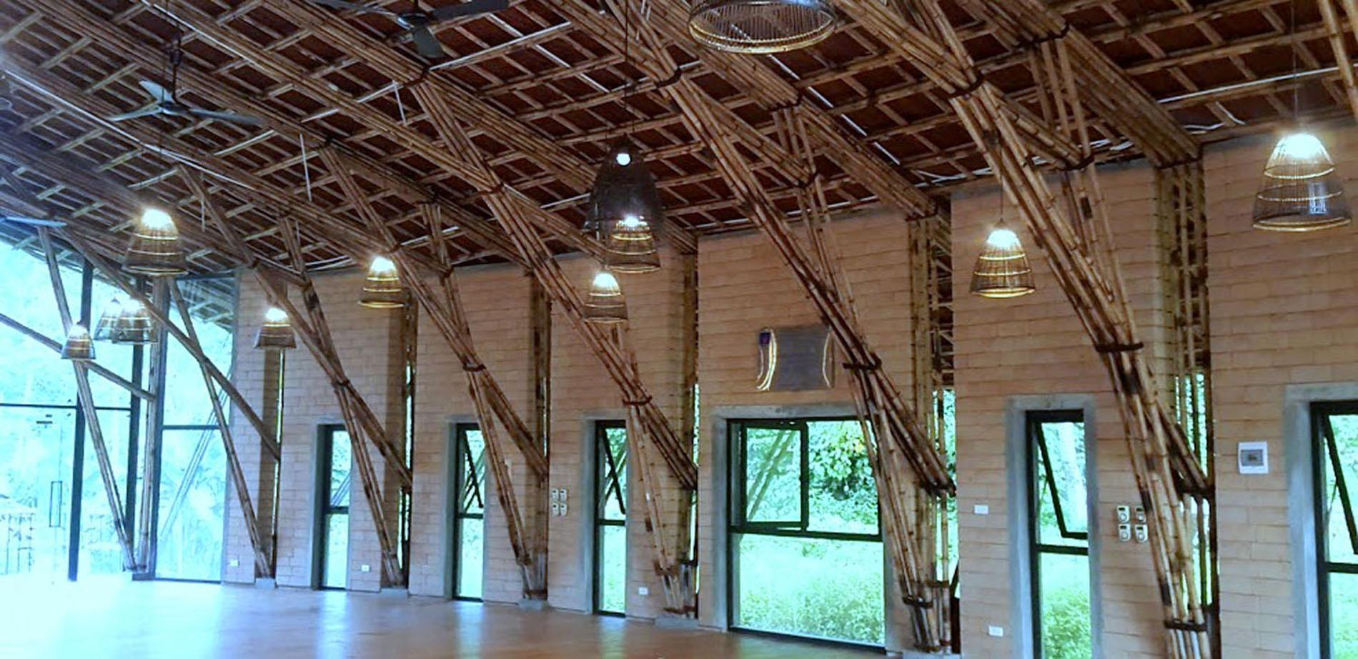 Mái nhà tầm vông
